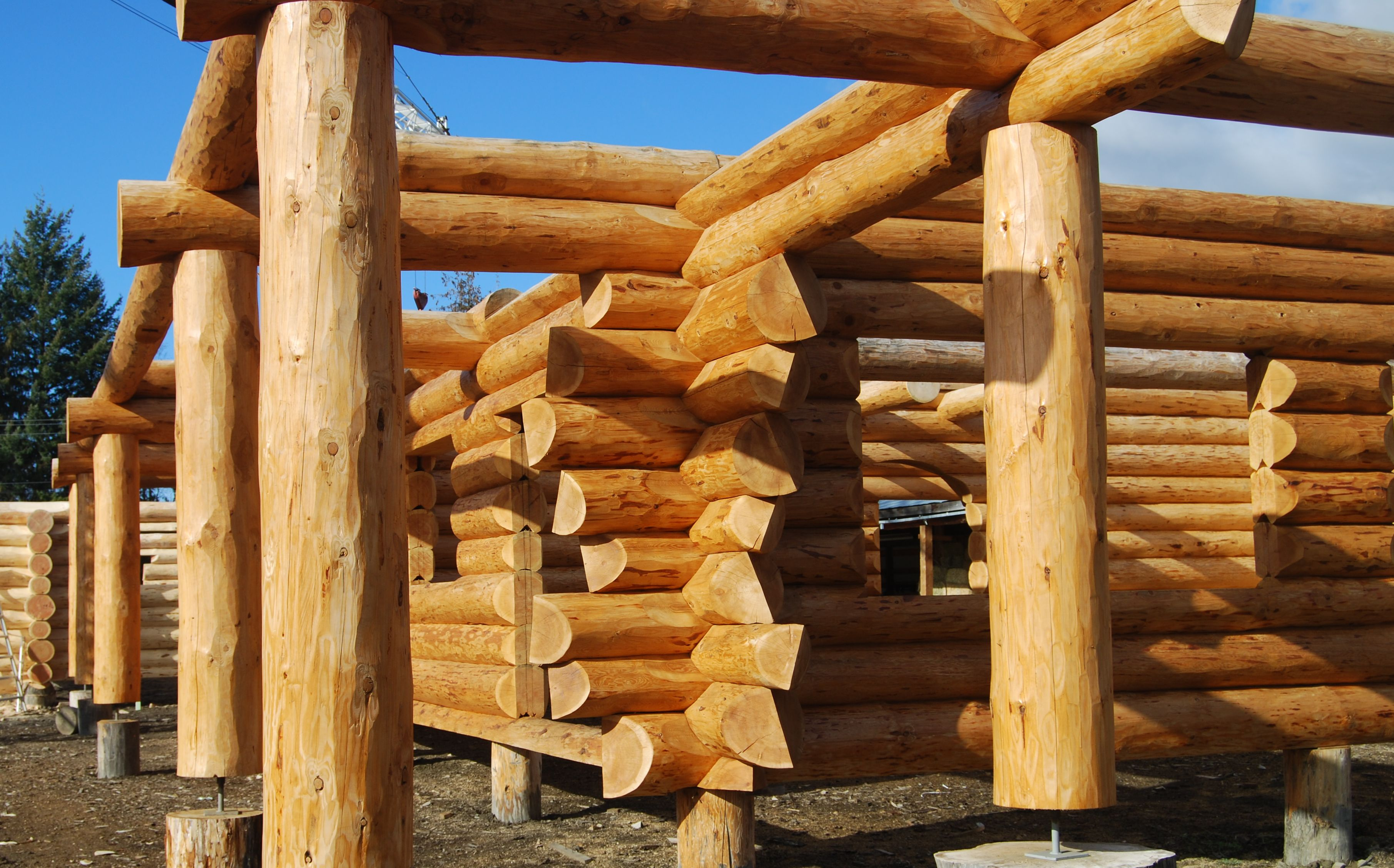 Log home ideas log homes with character cabins for Log construction